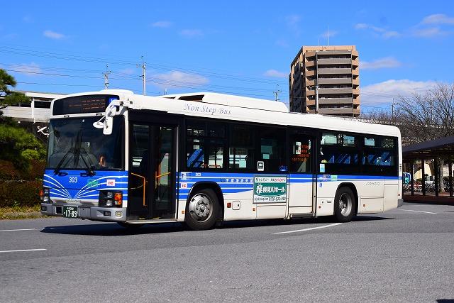 kaihin303