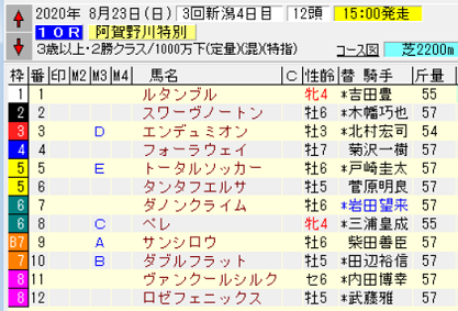 20阿賀野川特別