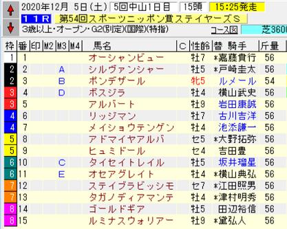 20ステイヤーズS