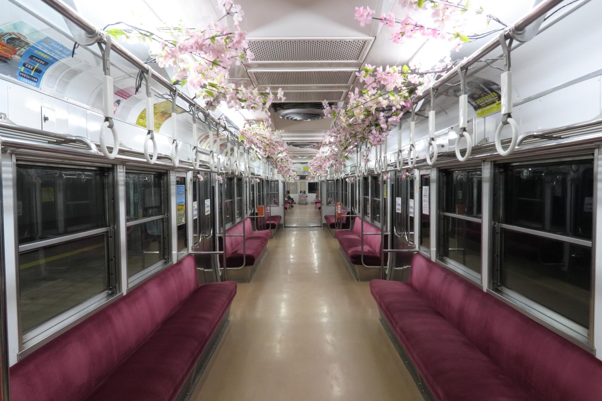 桜咲く車内