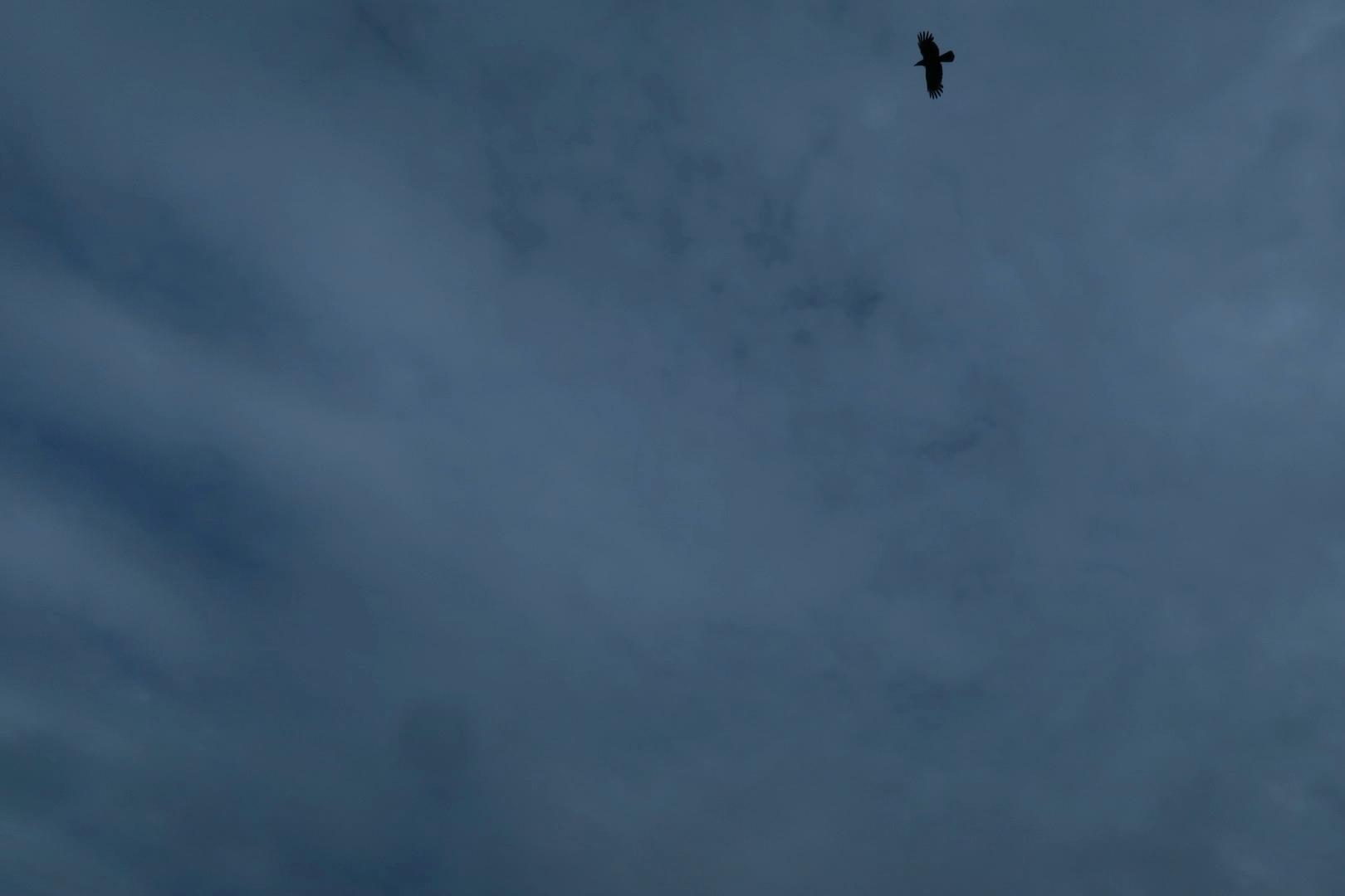 20200531今日の雲