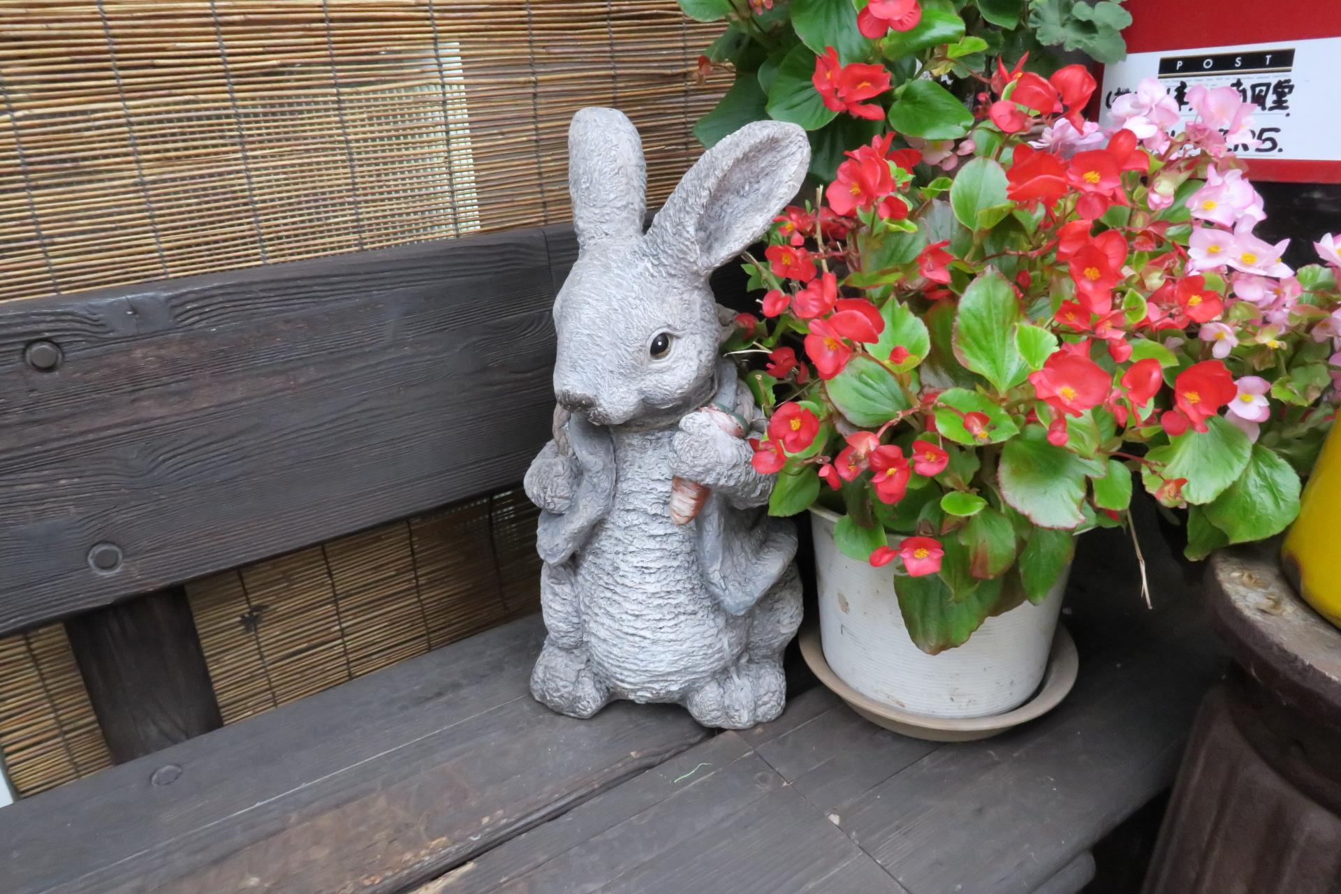 南風堂のウサギ