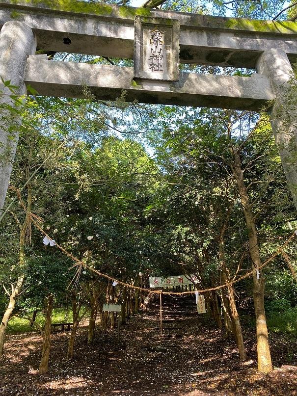 2020-10-17_金峰山 (1)