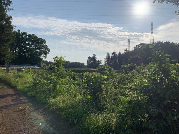 04丘散歩