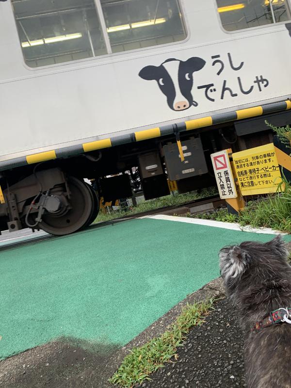 02うし電車