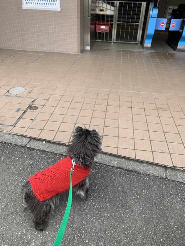 01みゆき