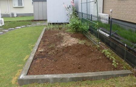 菜園20200612