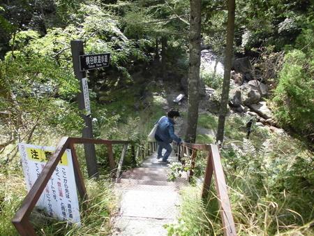 おしどり隠しの滝1