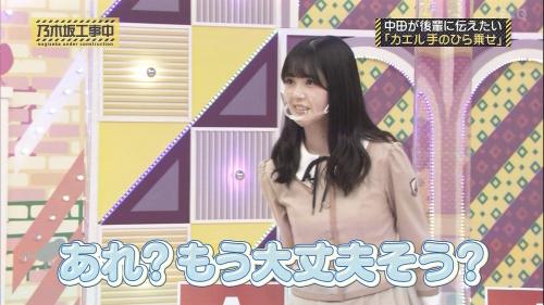 NOGICHU201101-54