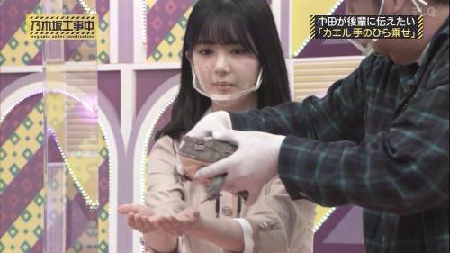 NOGICHU201101-55