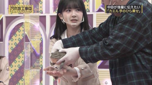 NOGICHU201101-56