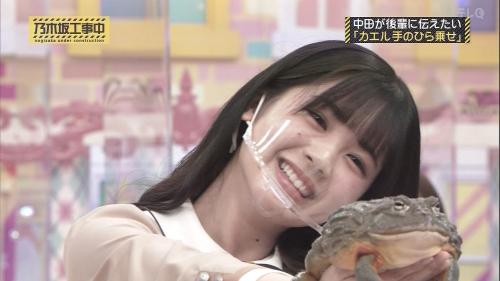 NOGICHU201101-63