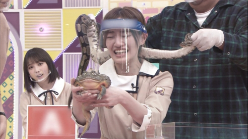 NOGICHU201101-75