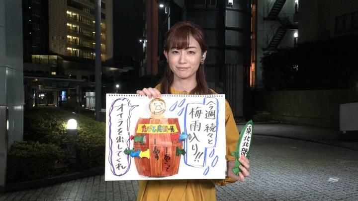 2020年06月13日新井恵理那の画像21枚目