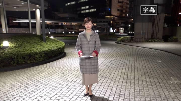 2020年10月24日新井恵理那の画像11枚目