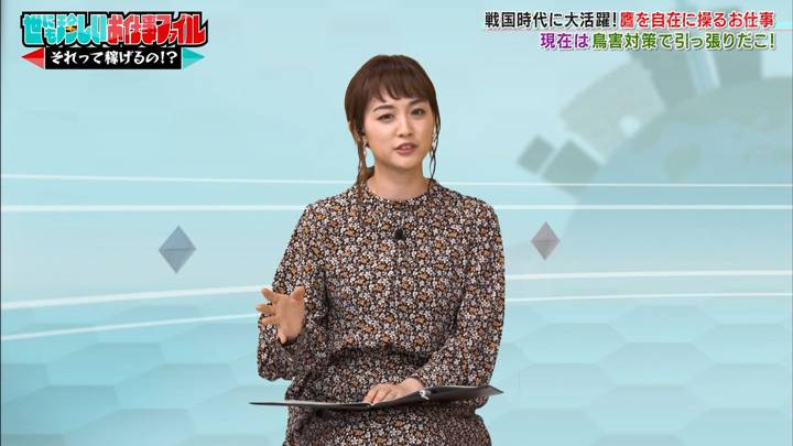 2020年11月03日新井恵理那の画像25枚目