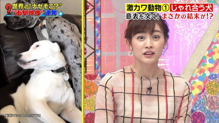 2020年12月03日新井恵理那の画像23枚目