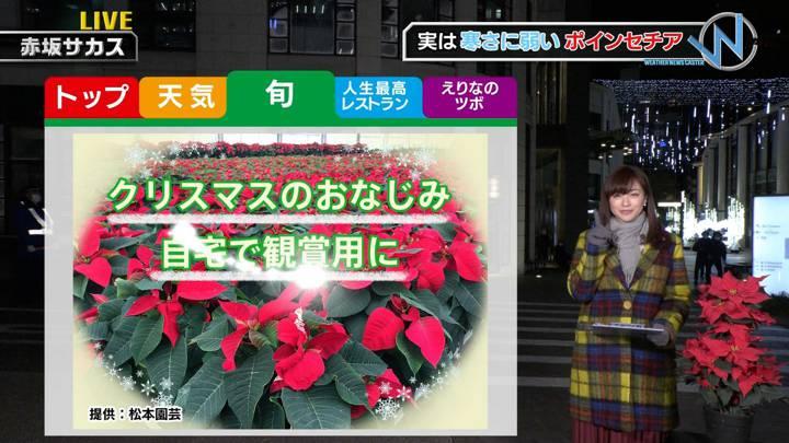 2020年12月19日新井恵理那の画像31枚目