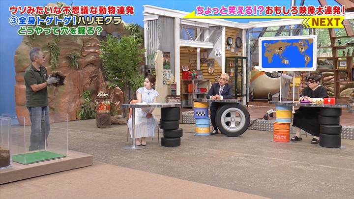 2020年08月31日岩田絵里奈の画像04枚目