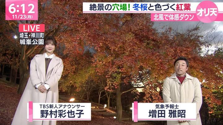 2020年11月23日野村彩也子の画像01枚目