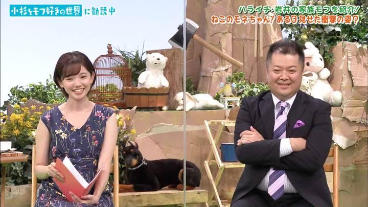 2020年08月22日田中瞳の画像07枚目