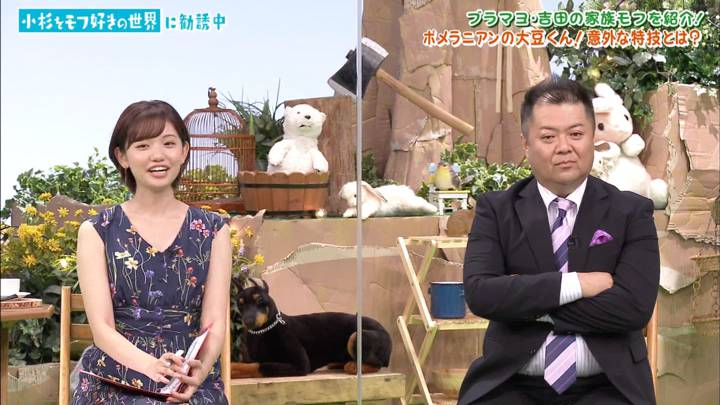 2020年08月22日田中瞳の画像08枚目