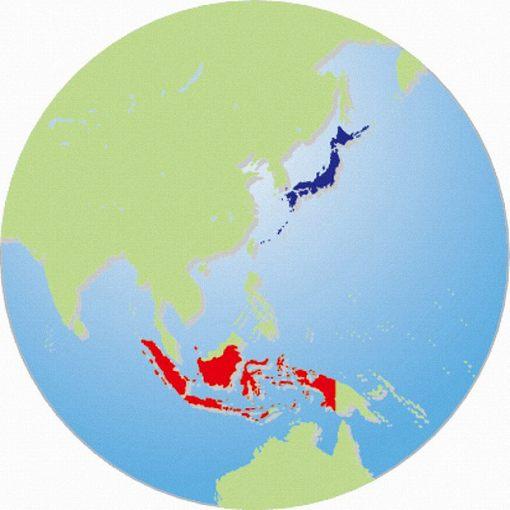 インドネシアと日本の交流