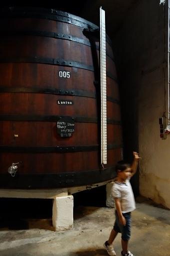 デカいワイン樽