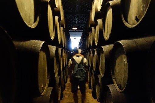 ポートワインの入った樽が並んで熟成されております。