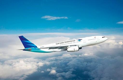 ガルーダ・インドネシア航空 飛行機