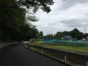 20200722-tokorozawa-03.jpg