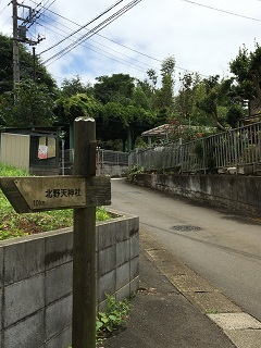 20200722-tokorozawa-10-1.jpg