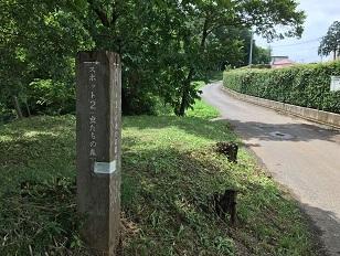 20200722-tokorozawa-10-5.jpg