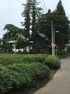 20200722-tokorozawa-14-3.jpg