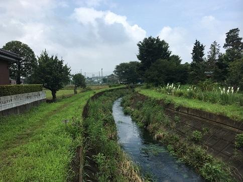 20200722-tokorozawa-23.jpg