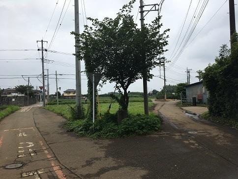 20200722-tokorozawa-31.jpg