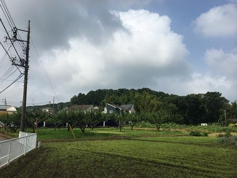 20200722-tokorozawa-41.jpg
