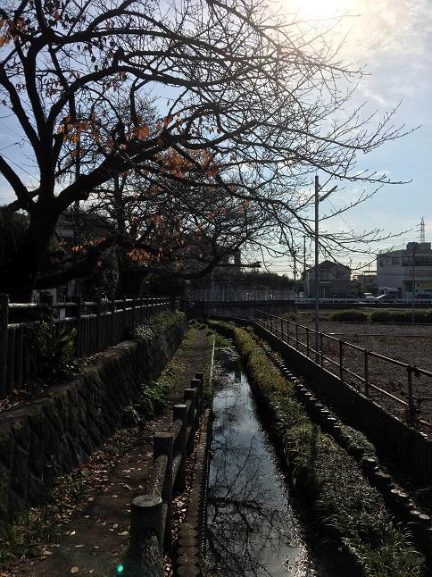 20201213 oyasumidokoro-21