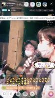 ちーとむ200417