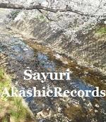 アカシックレコードリーディング 川辺の桜から アカシックレコードリーダーさゆり