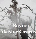 アカシックレコードリーディング アカシックレコードリーダーさゆり 八重桜 つぼみ 雪