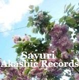 アカシックレコードリーディング アカシックレコードリーダーさゆり 花ちらしの大雨強風を過ぎての八重桜