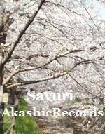 アカシックレコードリーディング アカシックレコードリーダーさゆり 川辺の桜と