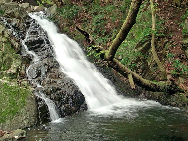 二位の滝02