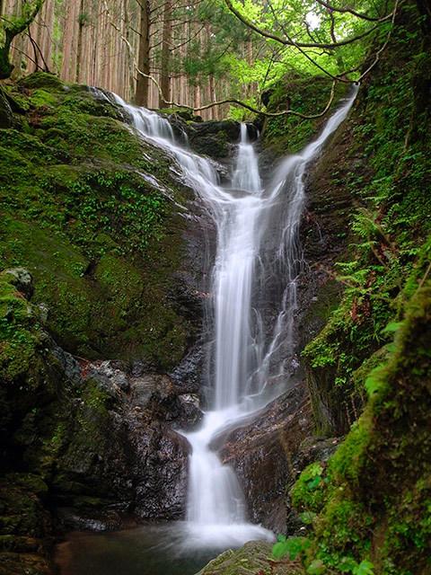 神山出会い滝02