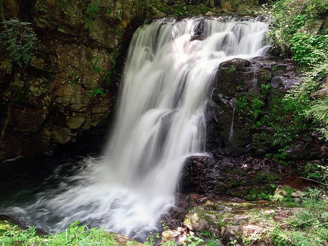 つたの滝02