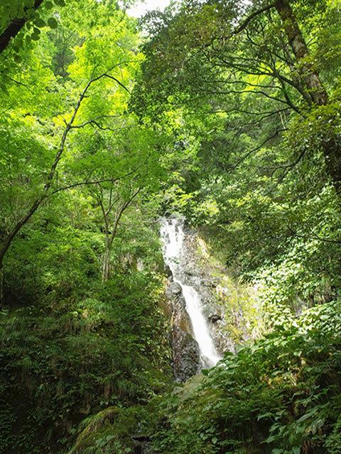 段の白滝06