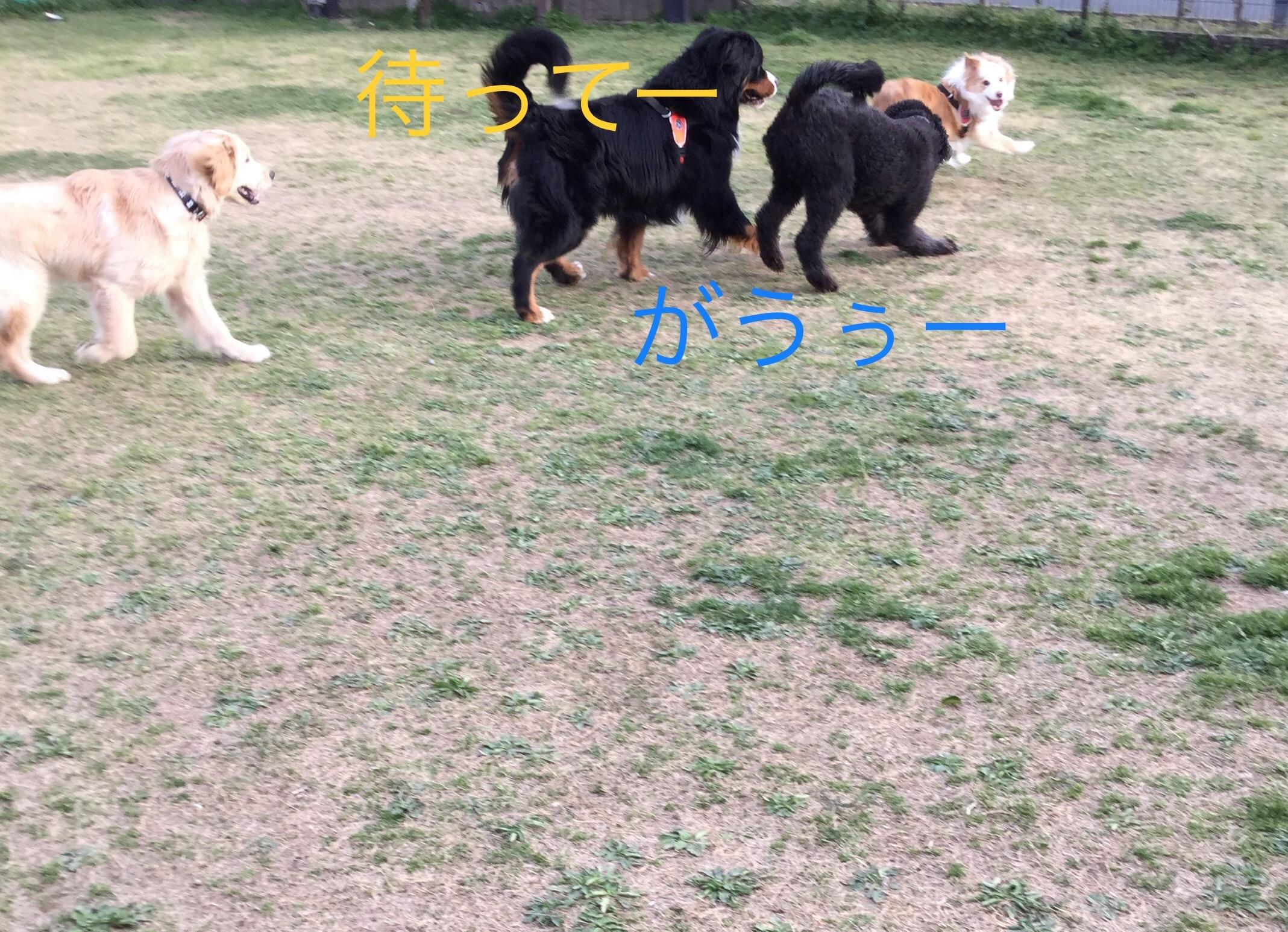IMG_E0854.jpg
