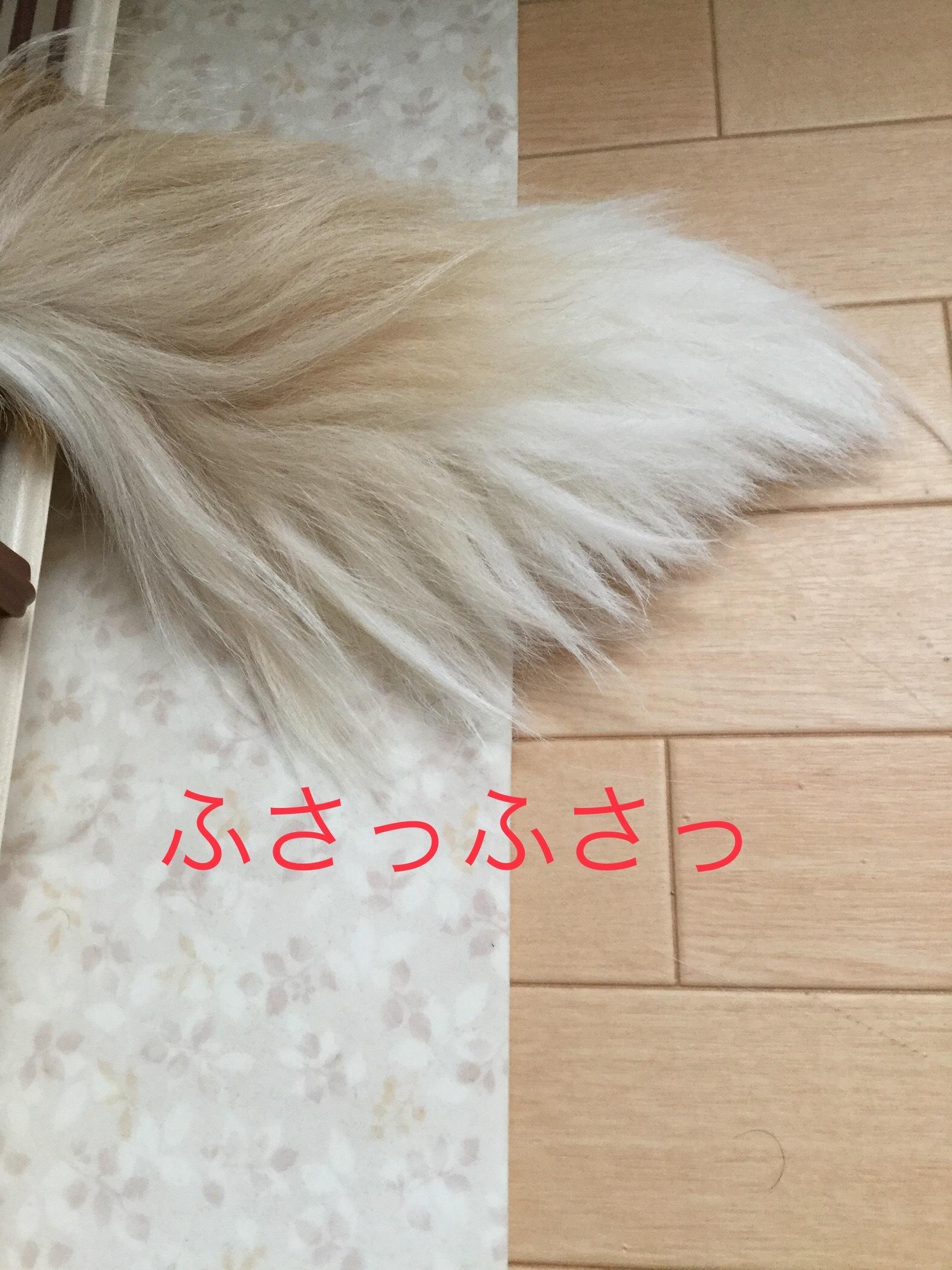 IMG_E1253.jpg