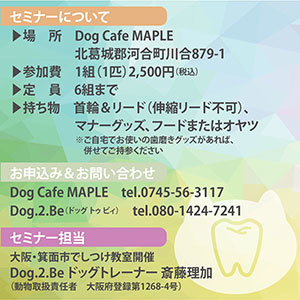 200912_maple-02.jpg
